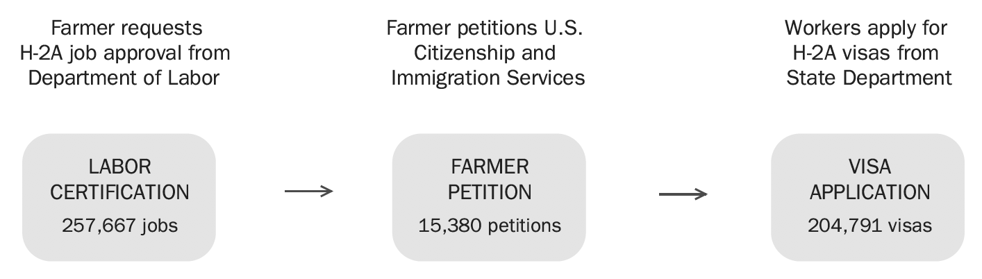 Farmer requests H-2A job approval from Department of Labor ? farmer petitions U.S. citizenship and immigration services ? workers apply for H-2A visas from State Department